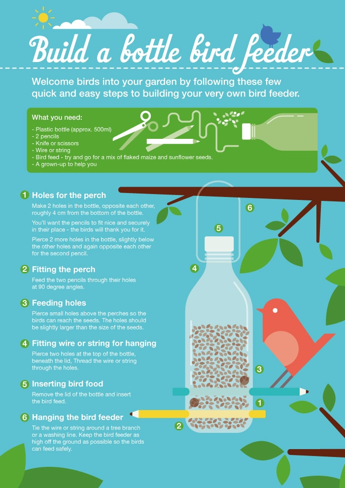 Build a bird feeder visual guide