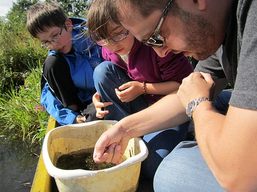 kids pond dipping family