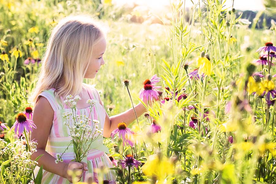 child picking wild flowers